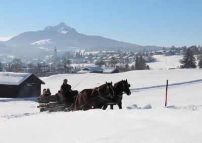 winter_kutsche